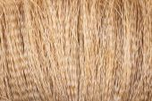 Detail of a broom texture — Stock Photo
