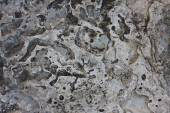 Old, dirty concrete texture — Stock Photo
