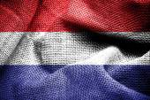 Fahne von niederlanden. — Stockfoto
