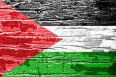 Palestine Flag — Stock Photo