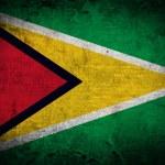 Grunge Guyana Flag — Stock Photo #59493799