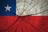 Chile Flag — Stock Photo