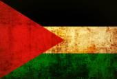 Grunge of Palestine Flag — Stock Photo