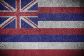 Hawaii Flag — Stock Photo