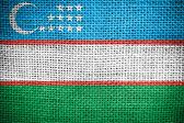 Waving Uzbekistan Flag — Stock Photo