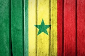 Senegal Flag — Stock Photo