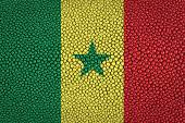 Senegal Flag — Stock Photo