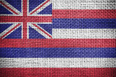 Flag of Hawaii state (USA) — Stock Photo