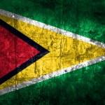 Grunge Guyana Flag — Stock Photo #60694437