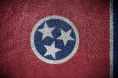 Tennessee State Flag painted on leather texture — Stock Photo