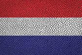 Netherland Flag — Stock Photo