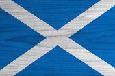 Scotland Flag — Stock Photo