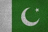 Pakistan Flag — Stock Photo