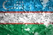 Uzbekistan Flag — Stock Photo