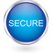 Secure icon glossy button — Stock Vector #62394565