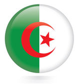 Algeria flag button — Stock Vector