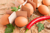 Fresh brown eggs, parsley and chili pepper — Stock Photo
