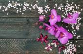 Orchid flower, crystals and sequins on the old wooden background — Stock Photo