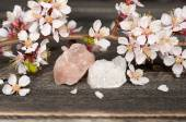 Flowers and minerals are white and pink quartz on wooden backgro — Stock Photo