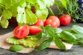 Basil leaves, fresh lettuce, tomatoes and thyme on a wooden tabl — Stock Photo