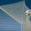 Football ball flies into the net gate close-up — Foto de Stock   #63812801