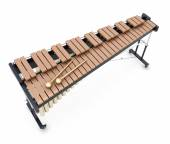 Xylophone on a whitre — Stock Photo
