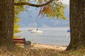 View of the lake in the autumn — Stock Photo