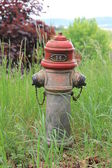 Water hydrant in park — Stockfoto