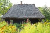 Traditional rural wooden cottage house — Stock Photo