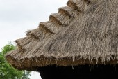 Traditional thatched roof on countryside — Foto Stock