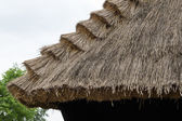 Traditional thatched roof on countryside — Stock Photo