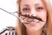 Woman eating insects with a fork in a restaurant — Stock Photo