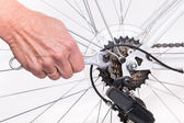 Woman hand repair bicycle whee with screw key — Stock Photo