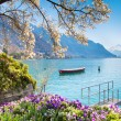 Montreux Riviera of Lake Geneva — Stock Photo #71177675