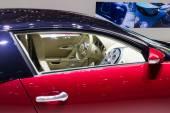 Bugatti Veyron Grand Sport at Geneva Motor Show 2015 — Stock Photo