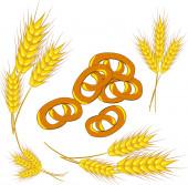 Wheat and Pretzel — Stock Vector