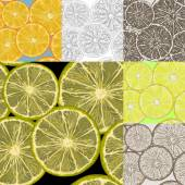 Rodajas de limón. — Vector de stock