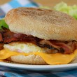 English muffin with fried egg, bacon and cheese — Stock Photo #55779395