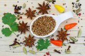 Coriander seeds with selection of Indian spices — Stock Photo