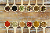 Selection of Indian spices on wooden spoons — Stock Photo