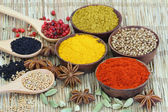 Selection of Indian spices — Stock Photo