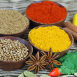 Selection of Indian spices and chilies — Stock Photo #65272207