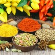Selection of Indian spices and chilies — Stock Photo #65306003