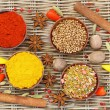 Selection of Indian spices and fresh chilies, close up — Stock Photo #65306117