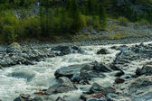 Rapids in mountain river — Stock Photo