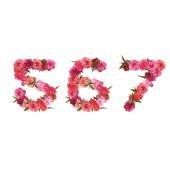 Alphabet of pink beautiful sakura flowers — Stock Vector