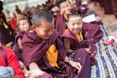India. Bodhgaya. December 2013.  Happy little monks doing the offering. Monlam - the biggest buddhist  festival of the year. Diamond way lineage of tibetan buddhism. — Stock Photo