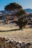 Bergslandskap på trekking vägen runt Annapurna i Nepal — Stockfoto