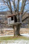 Country Tree house in the early Spring. — Stock Photo