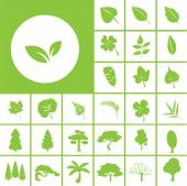 Leaf and tree icon — Stock Vector